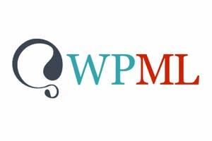 Parceria da Terralíngua e integração com o WPML